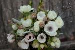 anemone spring bouquet